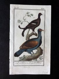 Buffon 1785 Antque Hand Colored Bird Print. Grouse 3-4